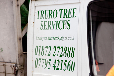 truro-trees